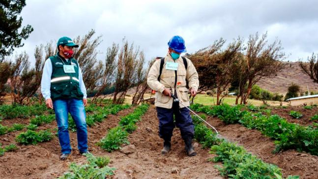 1500x844_importancia_protocolos_pandemia_agricultura