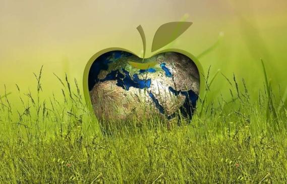 sustainability-3295824_960_720-845x541